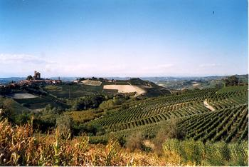 visit Camping Sole Langhe