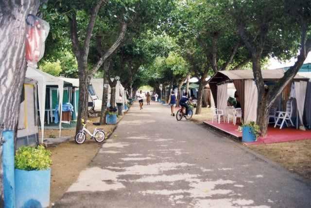 Villaggi e campeggi ancona camping marche for Campeggio green garden